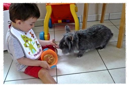 http://quotidiendemaman.cowblog.fr/images/P1110040modif.jpg