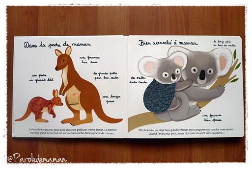 http://quotidiendemaman.cowblog.fr/images/livreatoucher2.jpg