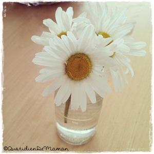 http://quotidiendemaman.cowblog.fr/images/photos2/1036944914301886305735141069249166n.jpg