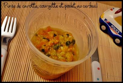 http://quotidiendemaman.cowblog.fr/images/pureecarottecourgettepouletaucerfeuilcrea2.jpg